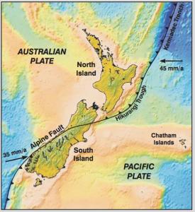 New_Zealand_plates