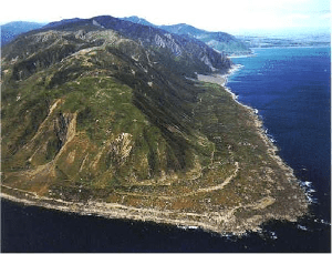 The raised platforms at Turakirae head mark old shorelines (visible as pale bands). The first shoreline inland from the present day coast is where the shoreline was in 1855, before the area was uplifted by the Wairarapa earthquake. Source: GNS science; geonet.