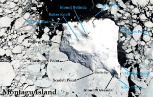 Satellite image of Montagu Island. IMAGE: Landsat 8/EOS Data Analytics. Annotated by René Goad.