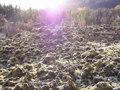 Moss-covered lava is a reminder of the deadly Tseax eruption in British Columbia