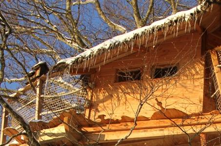 Cabane Perchée dans les arbres Cantal Auvergne en hiver