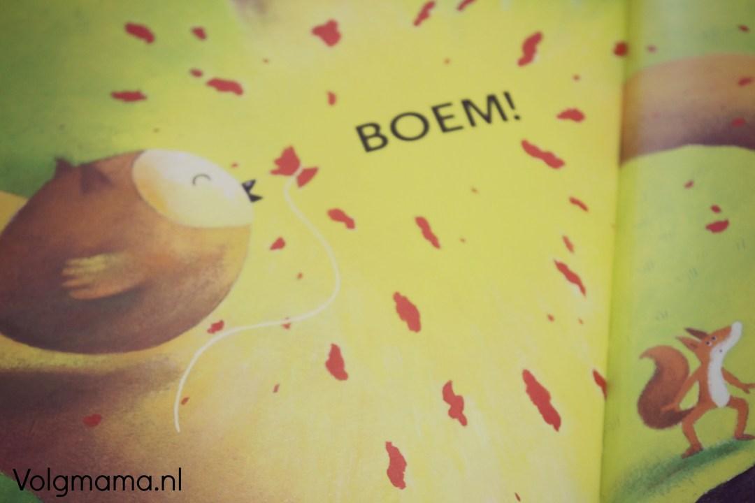 Boek review - Boem - Volgmama