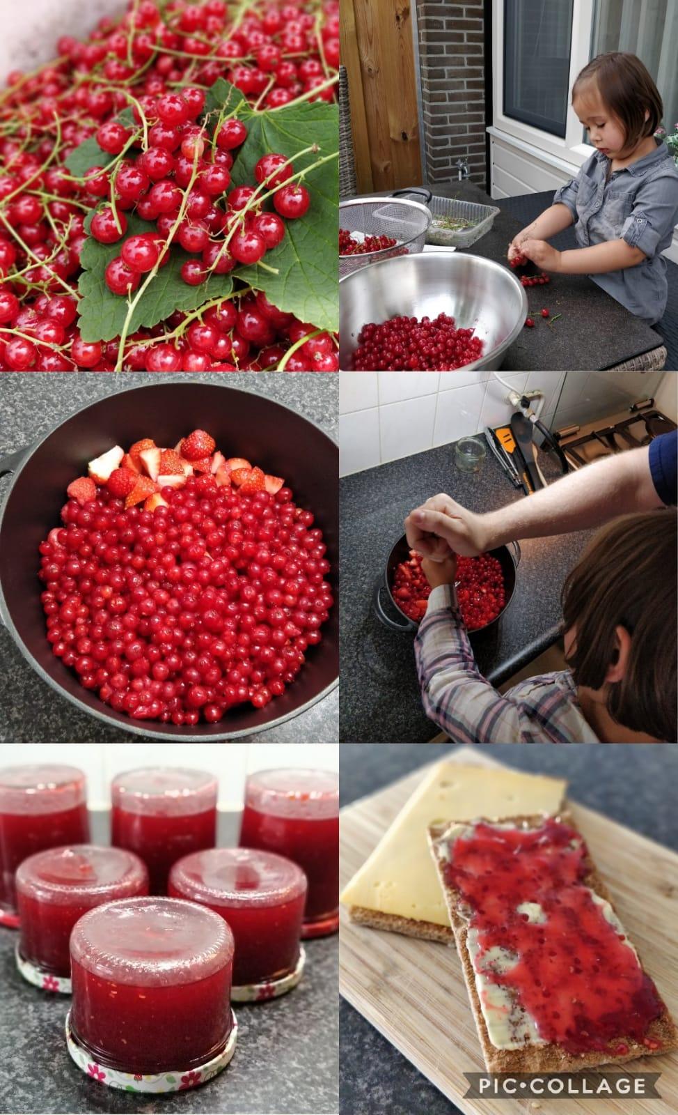 collage homemade jam 2.jpeg