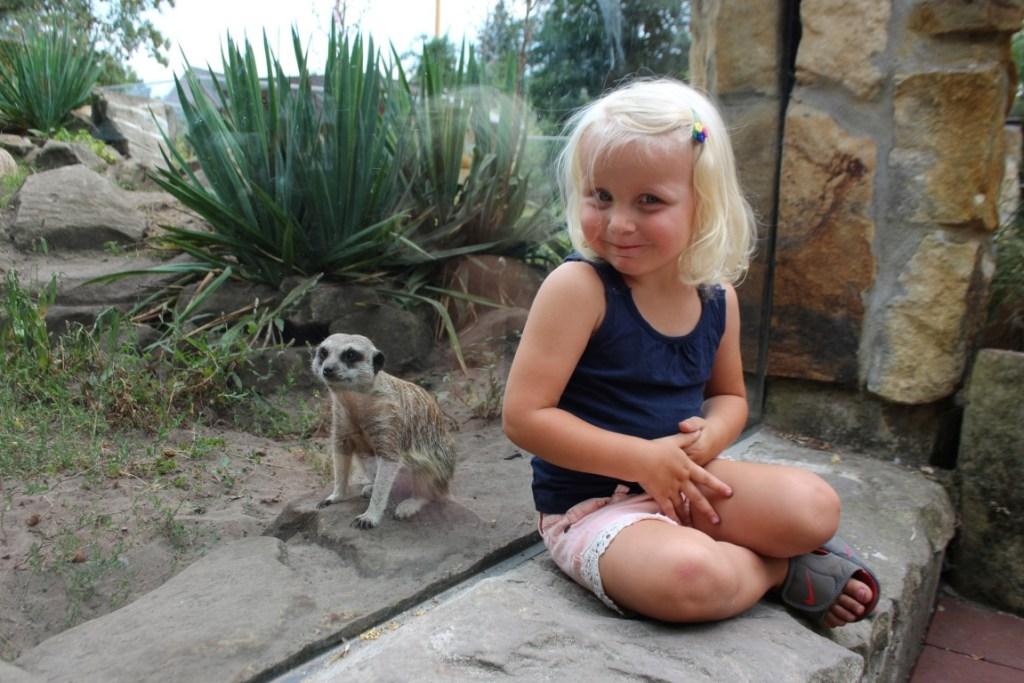 review - ervaring dierentuin Nordhorn