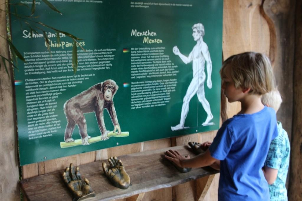 Review Tierpark Nordhorn