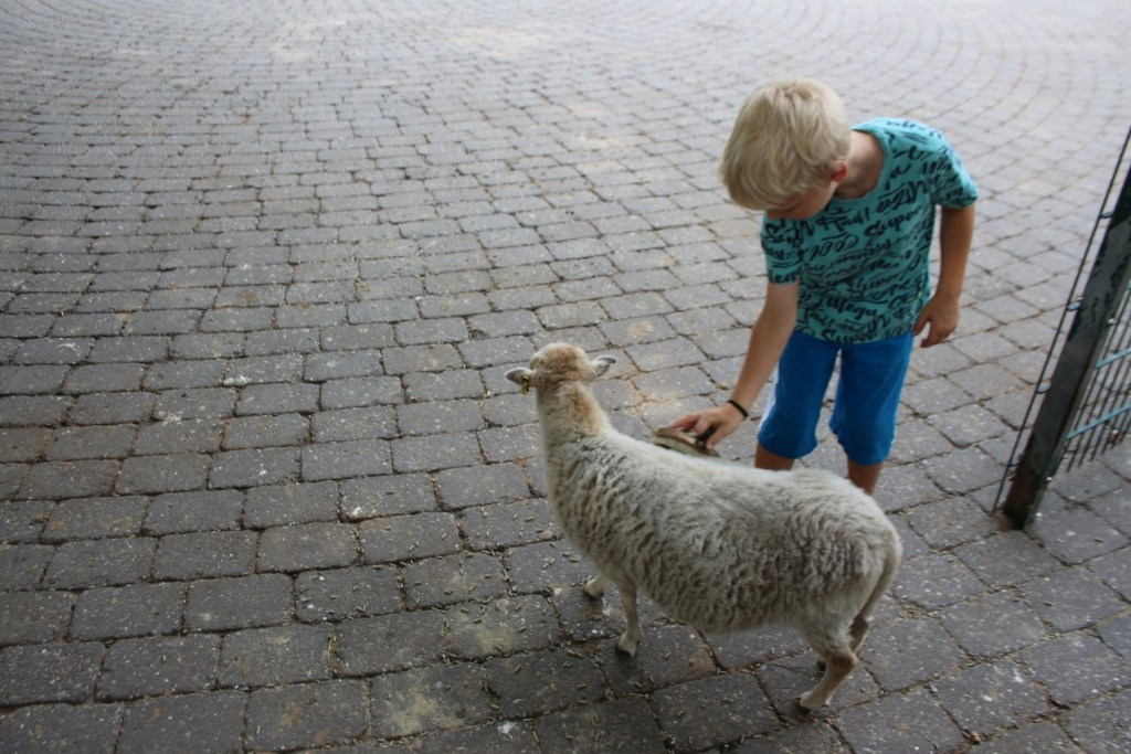 Tierpark Nordhorn review blog