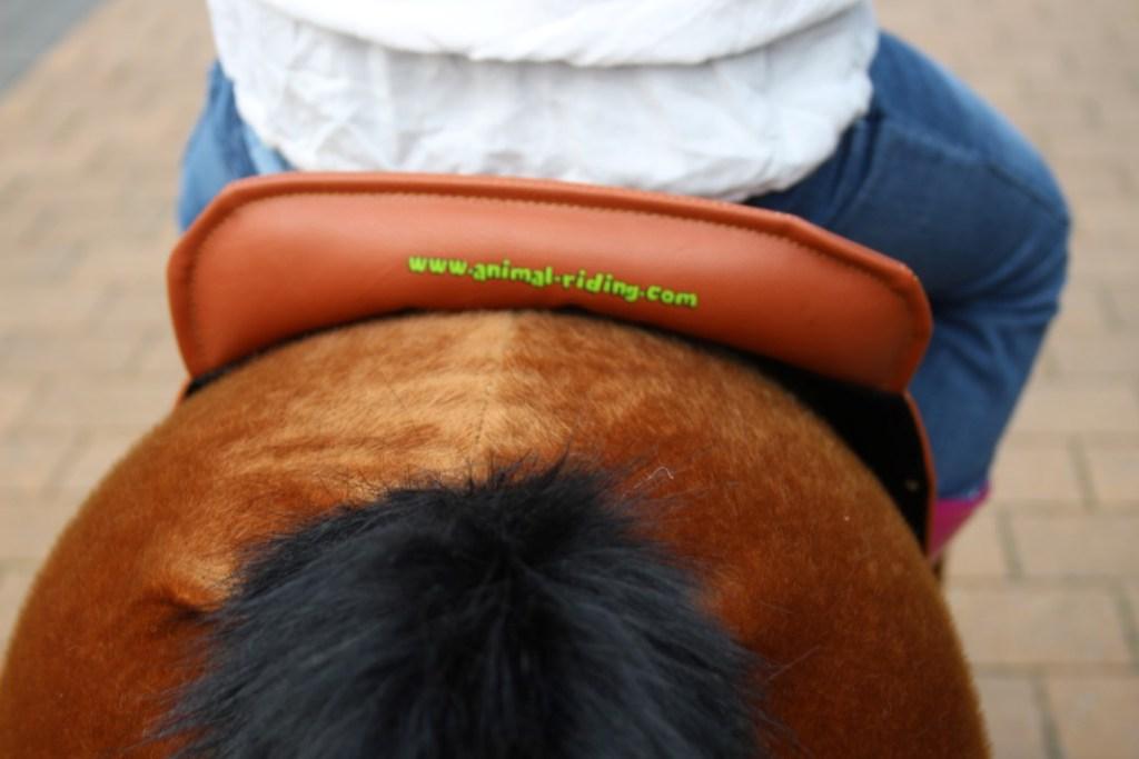 animalriding-paard-wielen