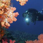 Diviing in the Vatu-i-Ra Passage with Ra Divers