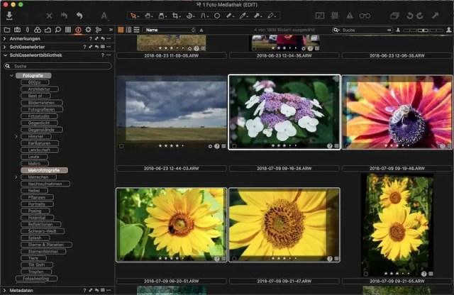 Capture One Workflow: Verschlagwortung
