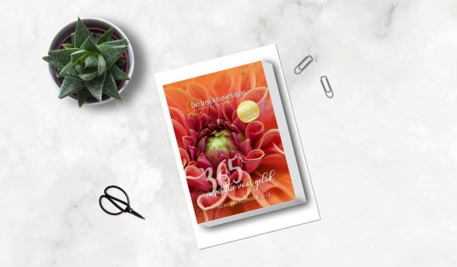 Shop 'm nu: de Inspiratiebron Scheurkalender 2022