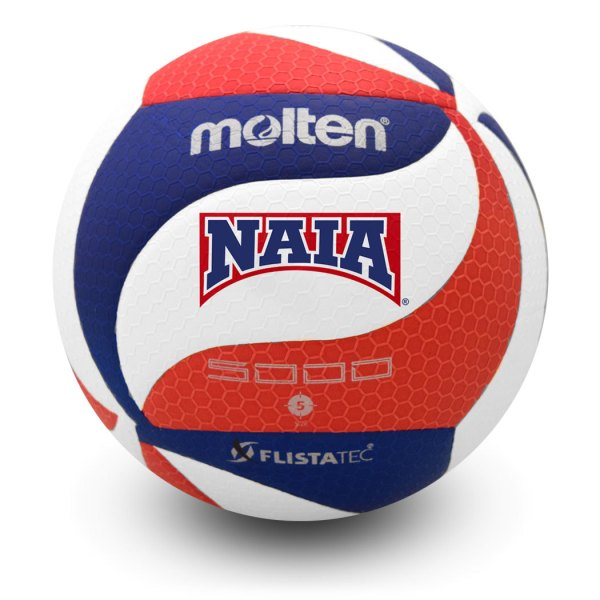 Molten FLISTATEC Official Game Ball NAIA