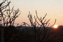 wp--20111115_Vollmers_158
