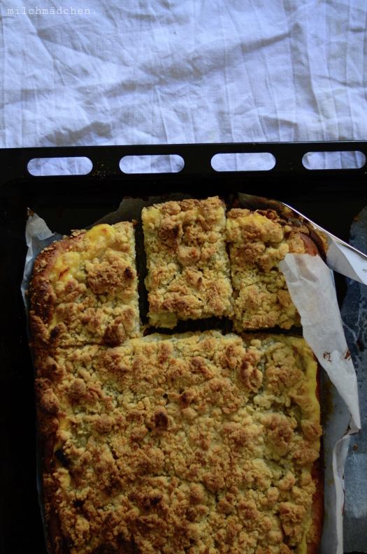 Rhabarber-Pudding-Streuselkuchen mit Festem Starter | milchmädchen.
