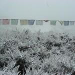 trek, prayers flags in the frost