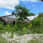 one of the volunteer houses, right beside the ocean