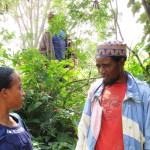 discussing tree nursery successes