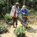looking at seedlings
