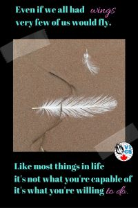 Even if we all had wings