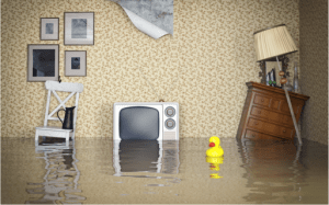 Volunteer Mold Knoxville Flooding if a house with furniture floating