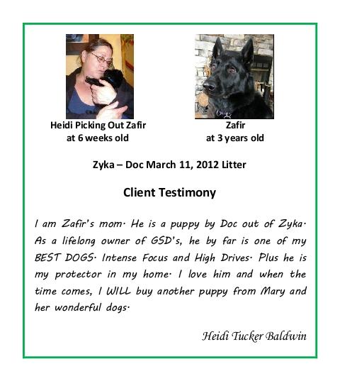 Heidi Tucker Baldwin Puppy Testimonial
