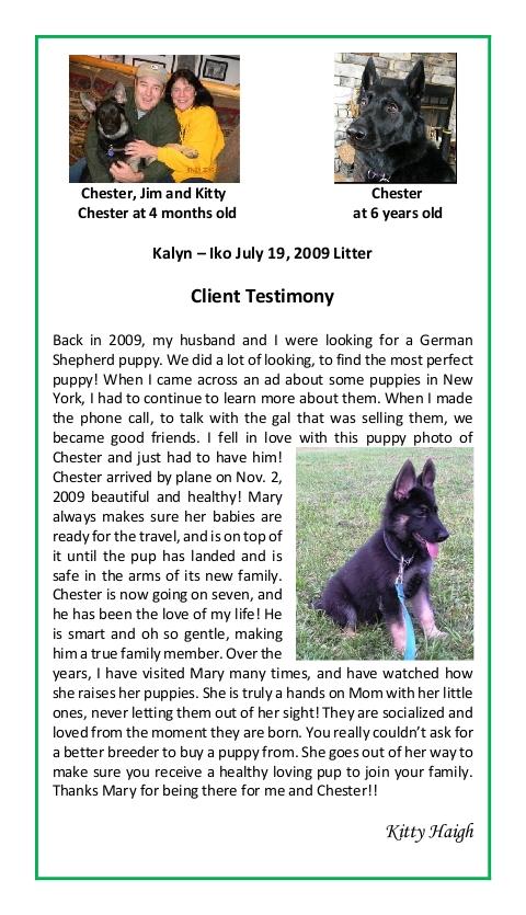 Kitty Haigh Puppy Testimonial