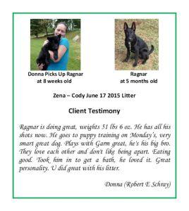 Ragnar Donna Puppy Testimonial Resized