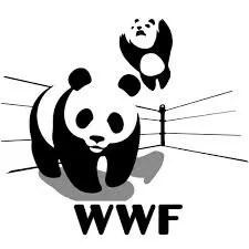 WWF-panda-wrestling