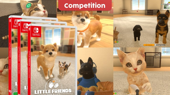 Competition: Three copies of Little Friends – Dogs & Cats to win