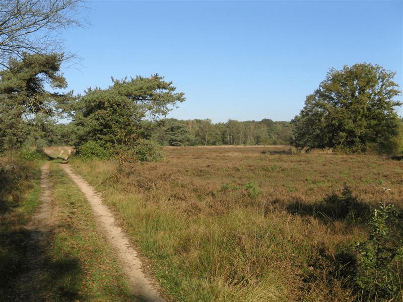 wandel fiets route voorthuizen