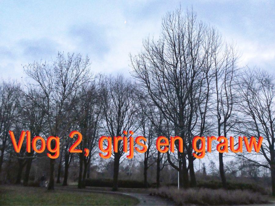 Vlog 2, grijs en grauw