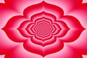 Root Chakra Activation