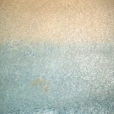 heat sun and or steam carpet cleaning