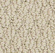 Carpet maintenance tips large weave Berber Carpet