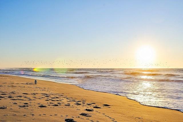 praias centro portugal