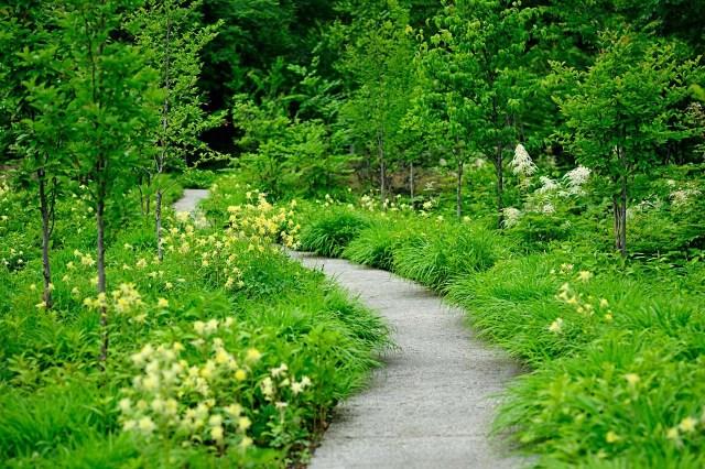 Parque botânico do Monteiro-Mor