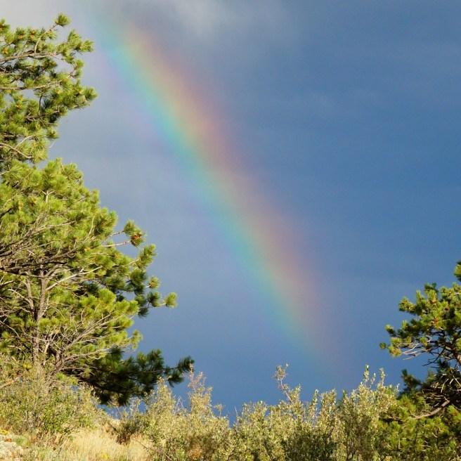 a surprise rainbow...