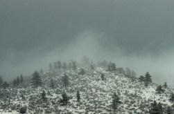 more snowy nonsense...