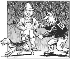 DEA Arresting Hemp Farmer