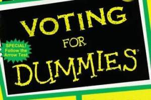 voting for dummies