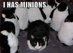 I has minions