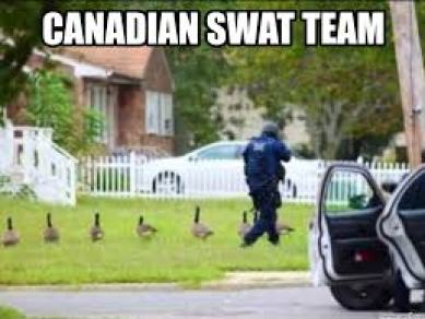 canadian-swat-team