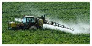 Les céréaliers veulent sortir du Glyphosate mais demandent des compensations