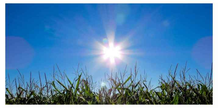 Le covid-19 pourrait être affaibli avec la chaleur et les rayons du soleil