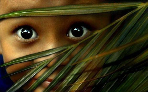 """Yeux d'enfant écarquillés """"une image vaut mille mots""""_conseil en image_relooking"""