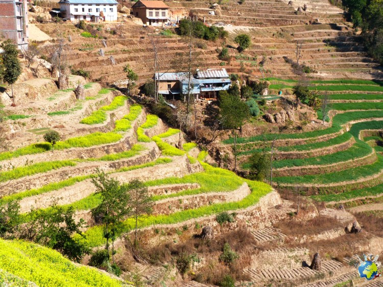 Village Banepa