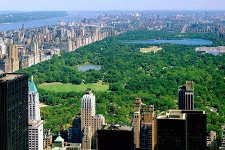 La vue sur Central Park du Rockefeller Center, magique !