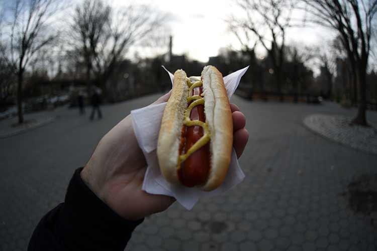 hotdogcentralpark