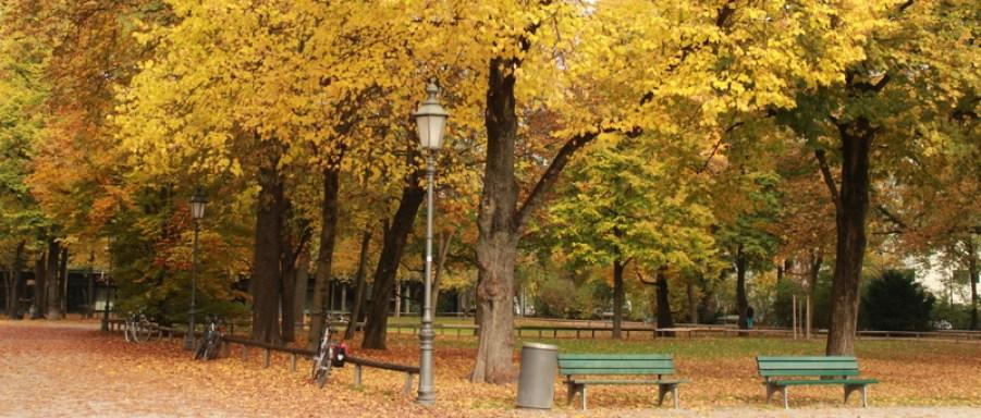 Outono-na-Alemanha