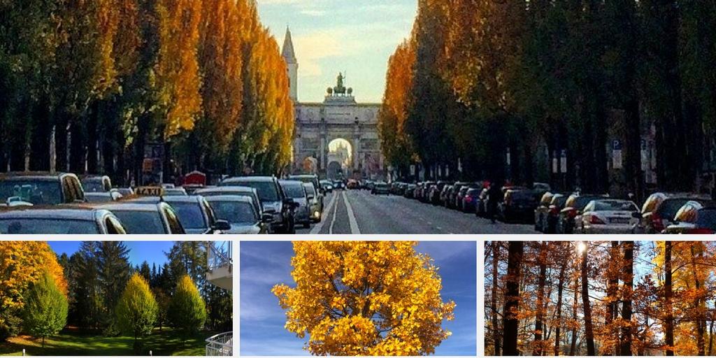 Munique fica dourada durante o Outono
