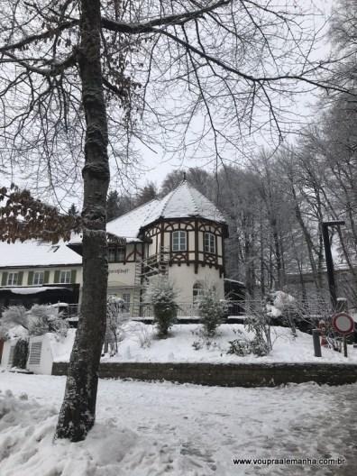 Castelo Neuschwanstein no inverno (3)